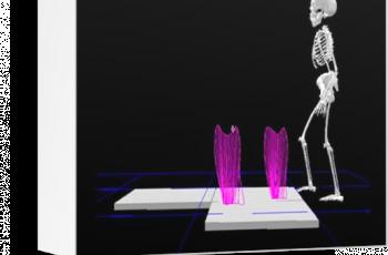 XVI Sympozjum Analiza ruchu – teoria i praktyka w zastosowaniach klinicznych