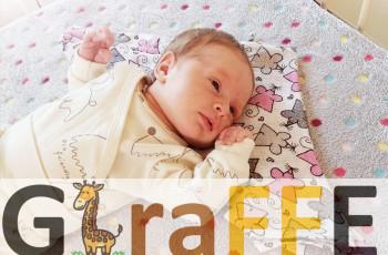 Rekrutacja do projektu Giraffe